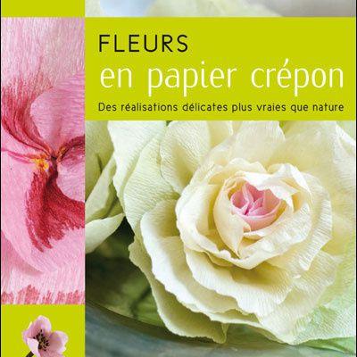 Fleurs en papier crépon (1) - chou d'ornement