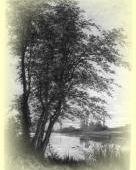Bourron-Marlotte - Histoire