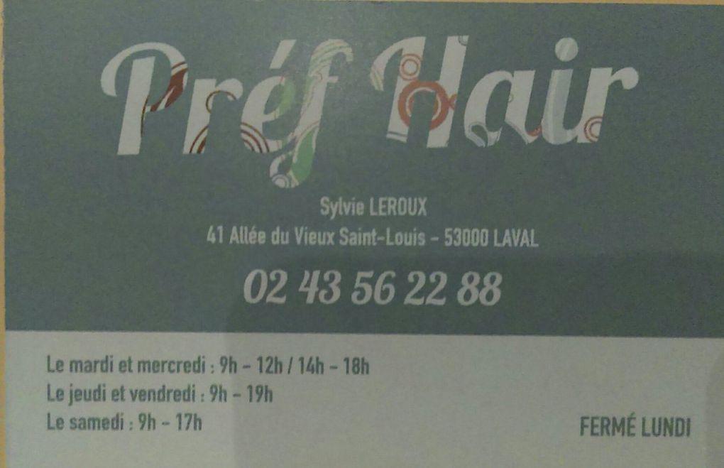 Sylvie LEROUX - 41 Allée du Vieux Saint-Louis -53000 LAVAL
