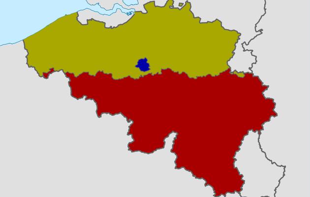L'instant néerlandais du jour (2021_01_19): artikel 1