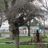 Re-Encuentro @ Fausto Gracia. 2013. Chili. photo. Milton Afanador Alvarado