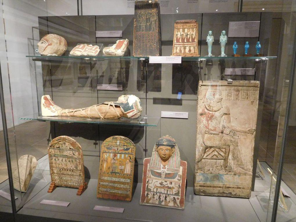 Museo Egizio – Torino (TO)