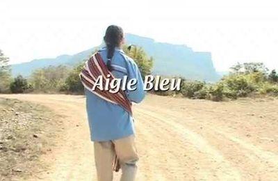Prière extraite du livre « Sentier de la beauté »d'Aigle bleu - Musique & Guérison - Traditions Amérindiennes – Aigle Bleu par Debowska Productions