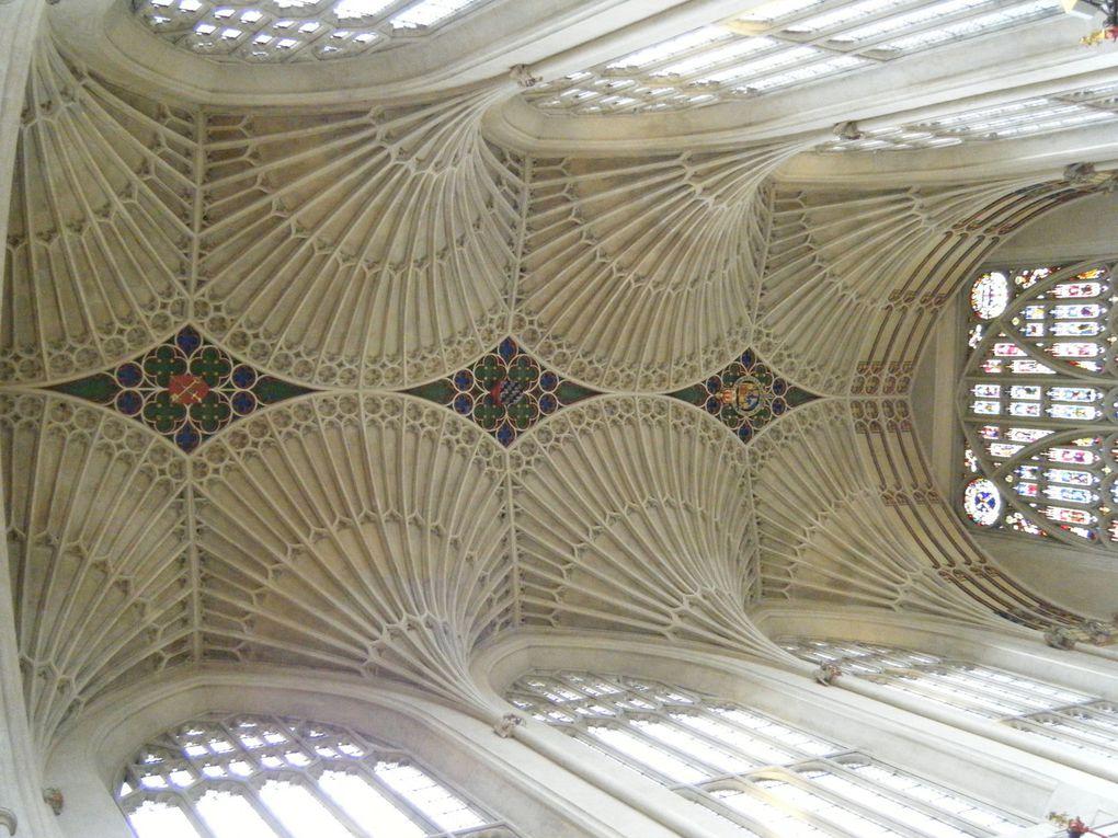 Plafond à voûtes des années 1500 en forme d'éventails