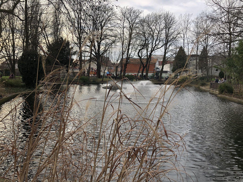 Fermeture des parcs ce jeudi 11 mars 2021 à Aulnay-sous-Bois