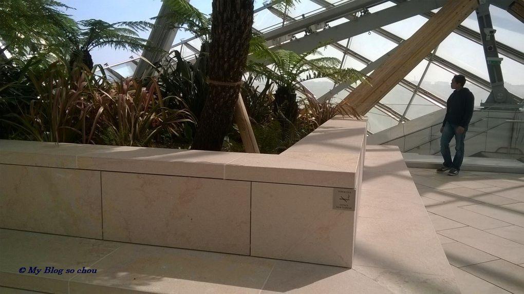 La Fondation Louis Vuitton: un défi architectural