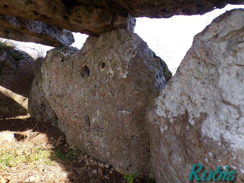 Dolmen de la Mouise Martin, Beauce-la-Romaine (41)