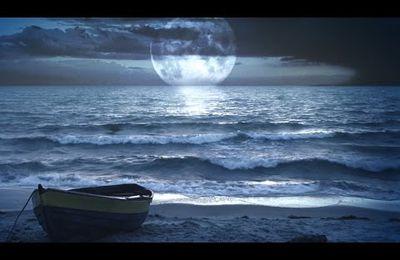 Bruit de la Mer et la Nature Pour Dormir, Méditer - Relaxation...