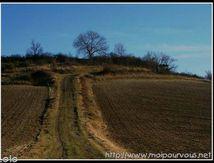 Le chemin qui monte, qui monte ...