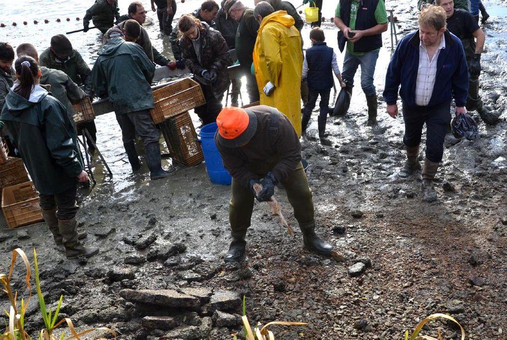 Il y avait beaucoup de monde pour la pêche de l'étang