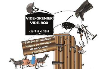 Vide grenier (box) à St Jean de Boiseau (44) dimanche 17 avril 2016