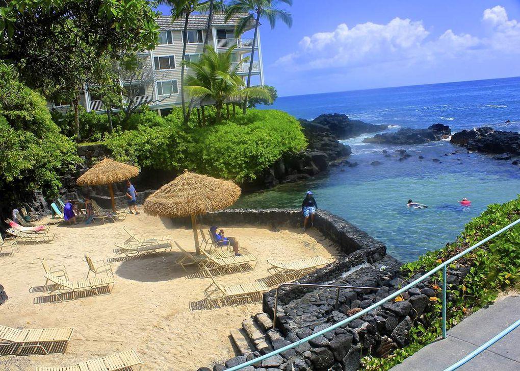 Conférences «Aloha d'Hawaii, la Magie des Dauphins et Baleines» à Percé