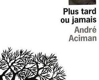Plus tard ou jamais [Call Me By Your Name] d'André Aciman
