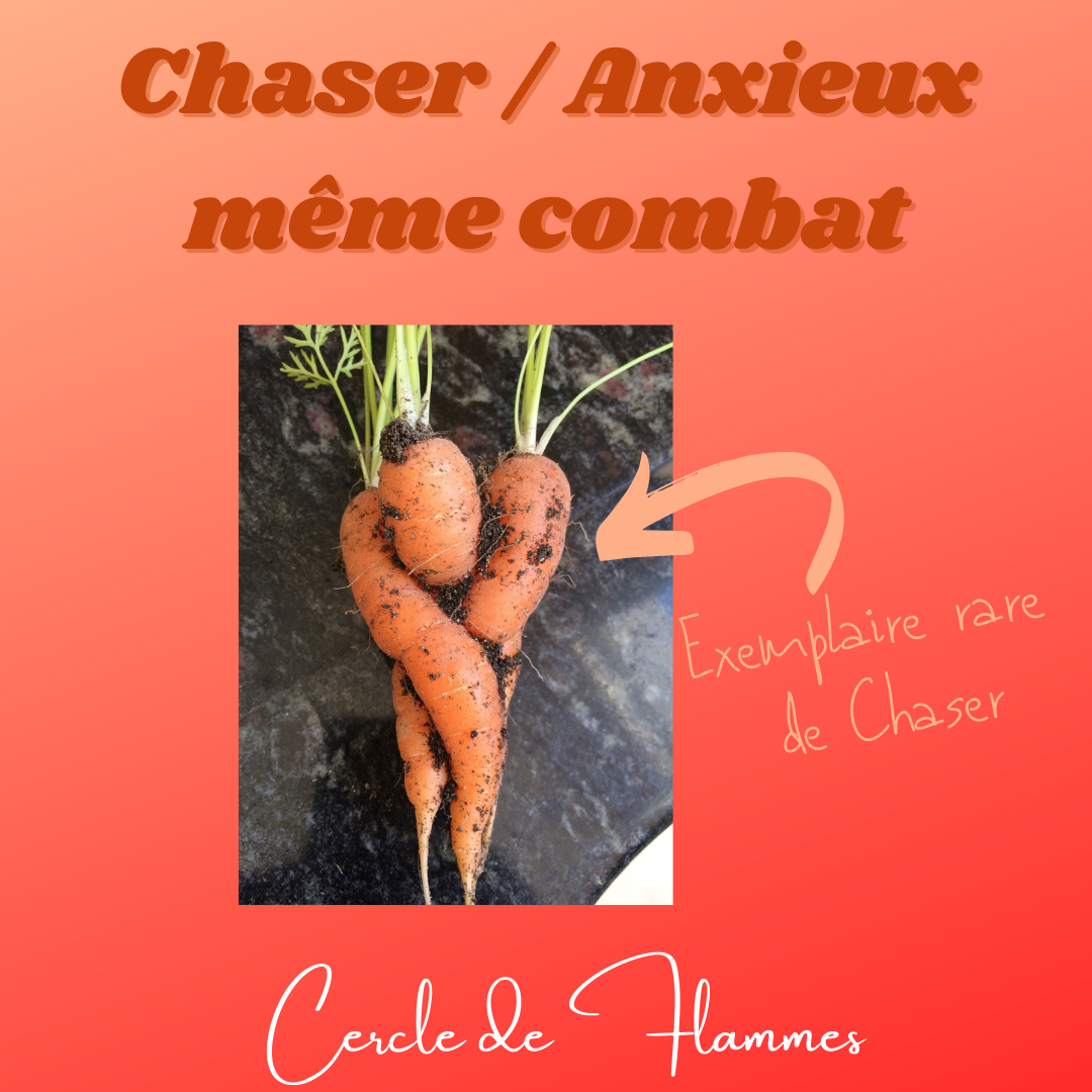 Chaser/anxieux, même combat