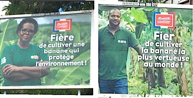 Quand les planteurs de bananes peuvent être fiers...