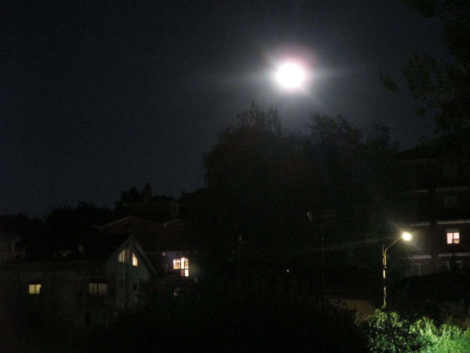 Il voto e la Luna e le Stelle e San Gennaro