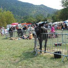 Le marché de la fête de l'âne