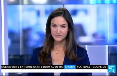 2014 01 05 - 22H00 - MARION GAUDIN - FRANCE 24 - LE JOURNAL