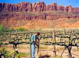 Utah and Vine