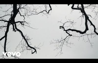 Eydís Evensen - Wandering II
