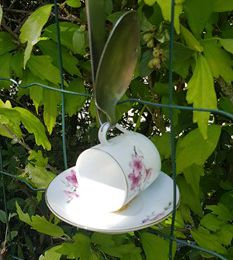 DIY : Do It Yourself : Tasses graines pour mon jardin de fille