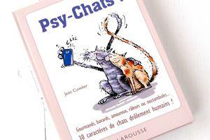 Psy Chats, 30 caractères de chats drôlement humains !