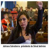 """Adriana SALVATIERRA : """" La victoire du MAS en BOLIVIE témoigne de la volonté des peuples de construire un AVENIR SOUVERAIN """" - Commun COMMUNE [le blog d'El Diablo]"""