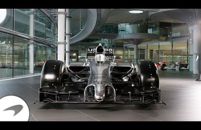Mc Laren MP4-29