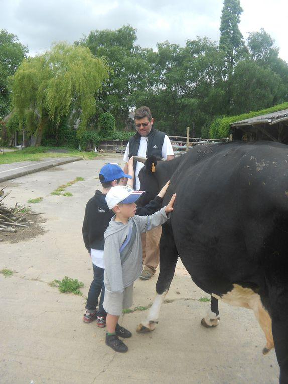 Promenade scolaire à la ferme