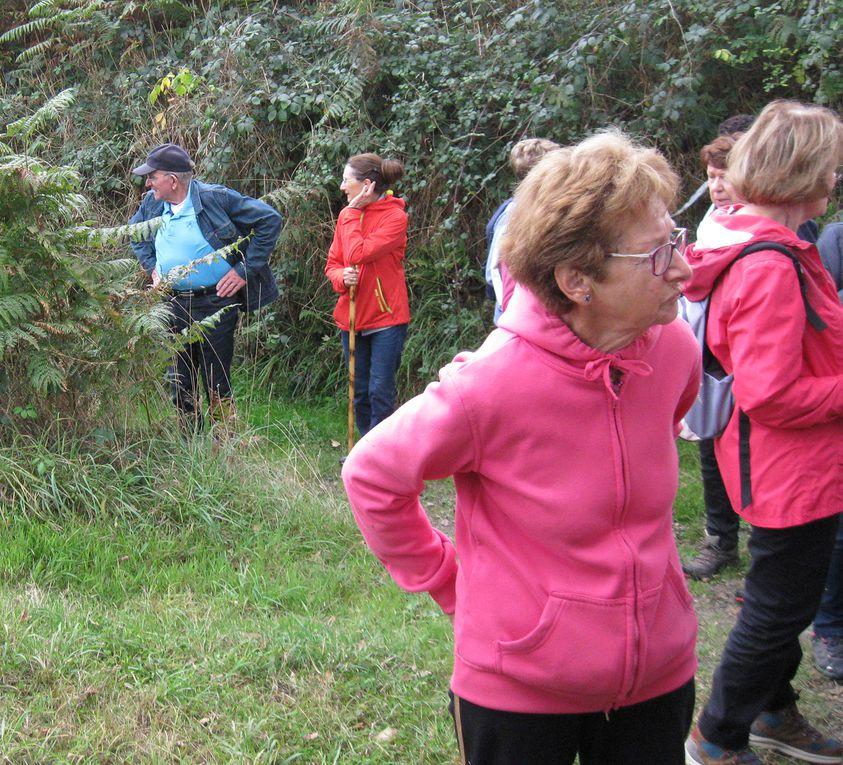 De l'activité à revendre : un kilomètre à pied, voire plus et encore