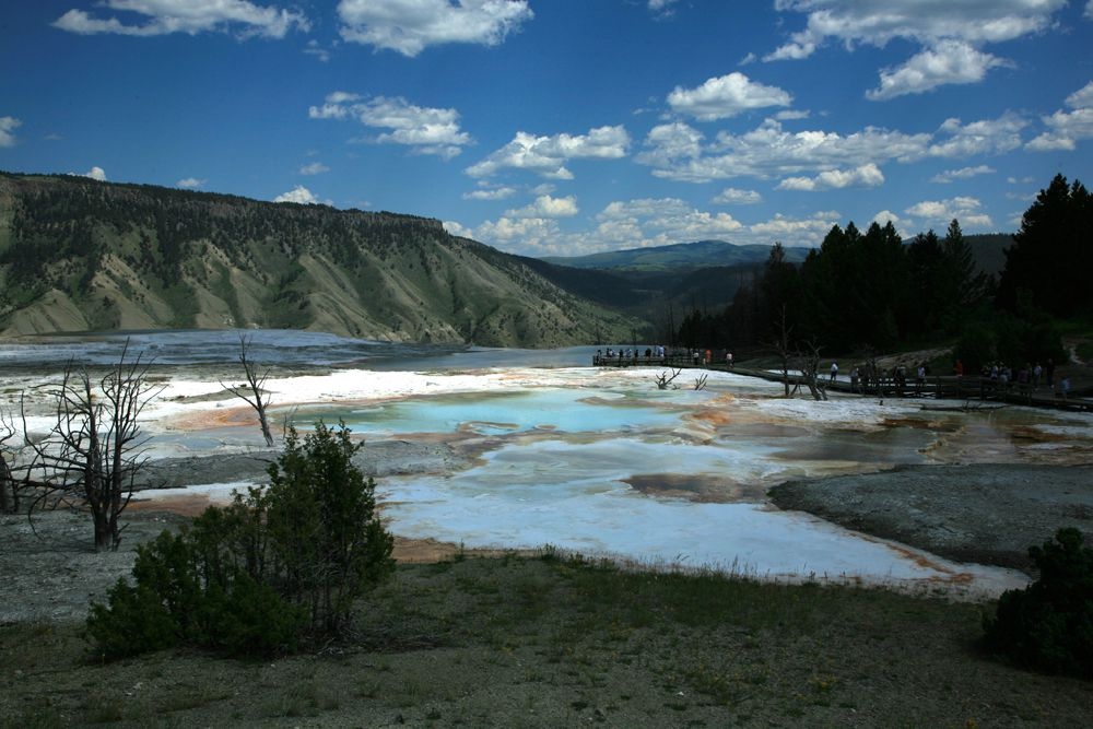 Paysage du Yellowstone N.P. -  photo © Bernard Duyck 09