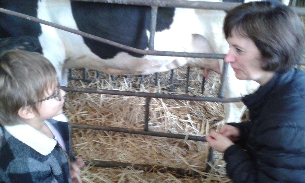 Visite d'une ferme pédagogique (GSM et maternelle adaptée)