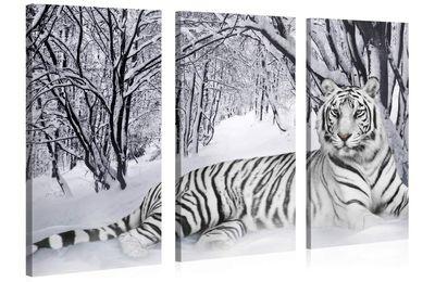 Tableau 3en1 tigre blanc coucher 130x80cm