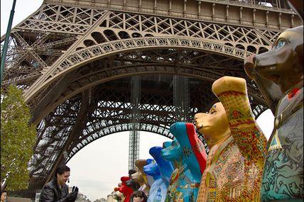 Paris, les ours squattent le champ de mars...