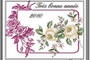 Cartes bonne année 2010