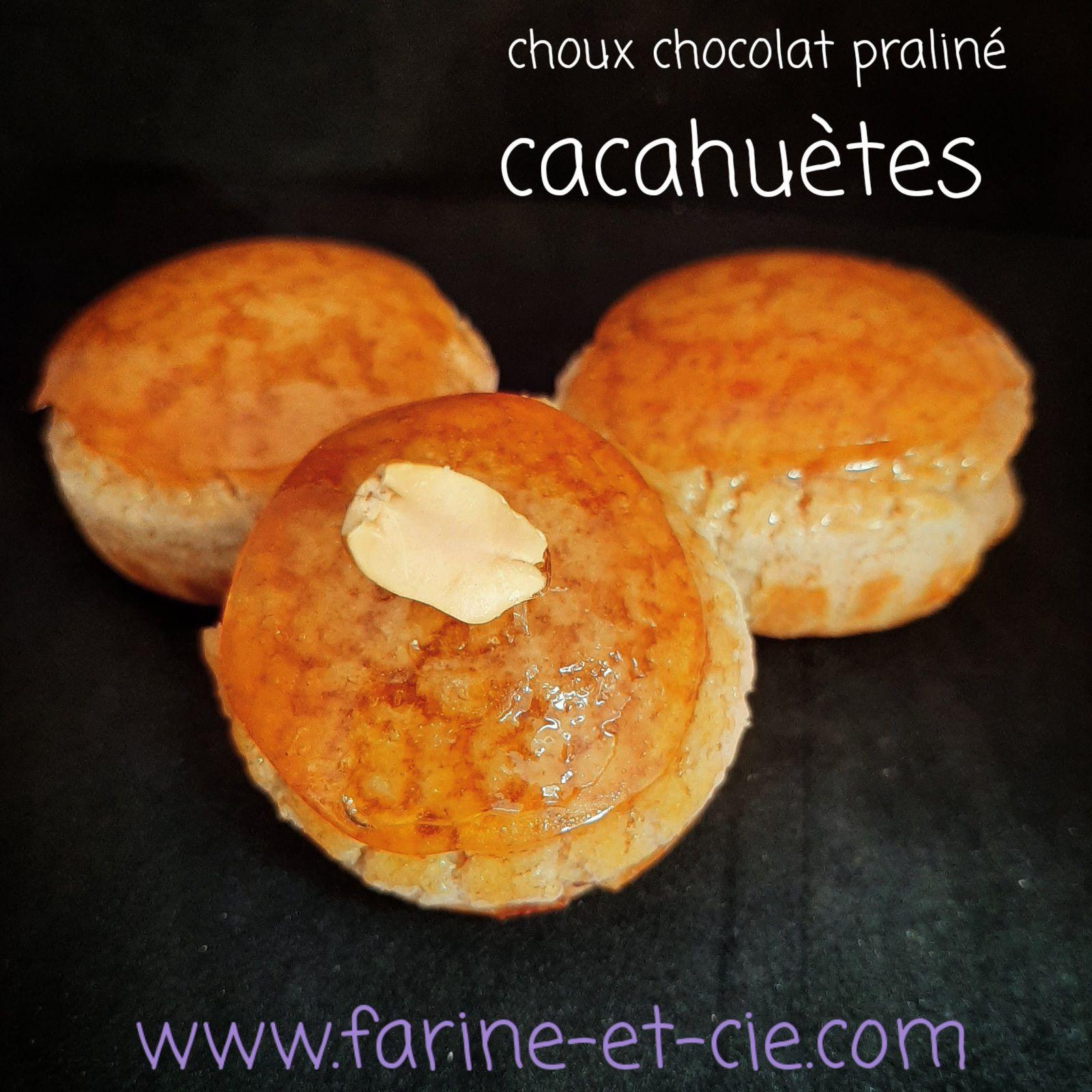 Choux au chocolat et praliné cacahuètes