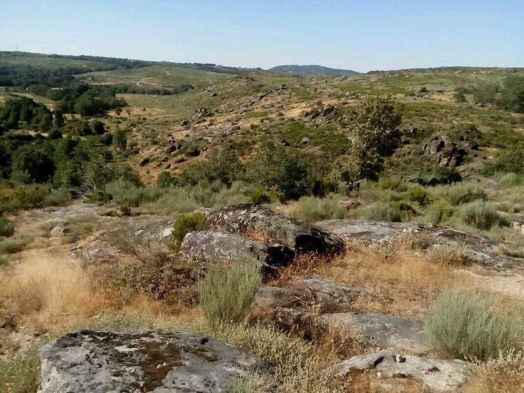 Plateau celtique. On est en Galice.