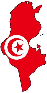 TUNISIE XXI over-blog.com