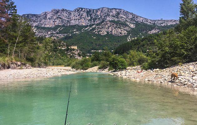 Baignade dans l'Estéron pour les filles, pêche pour moi