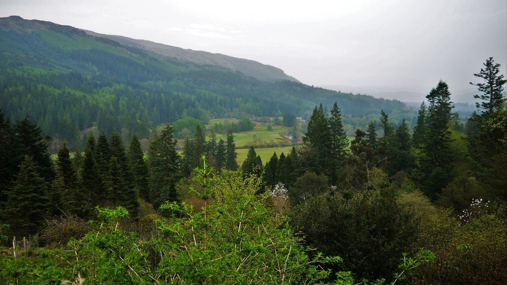 Isle of Bute und Benmore Botanical Garden