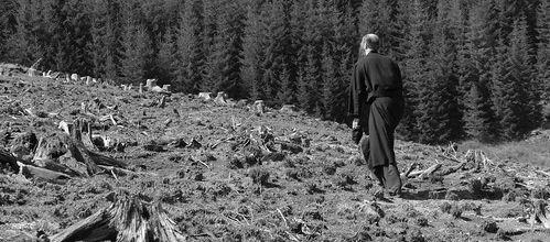 Fisa suplimentara - Despre monahismul romanesc