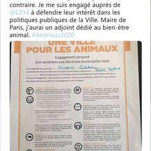 Pour M. Cédric Villani, Paris vaut bien une compromission avec L214