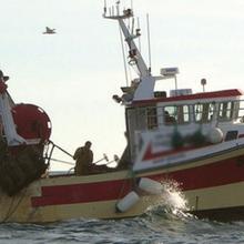 Douze cas de grippe A H1N1 déclarés parmi des marins pêcheurs