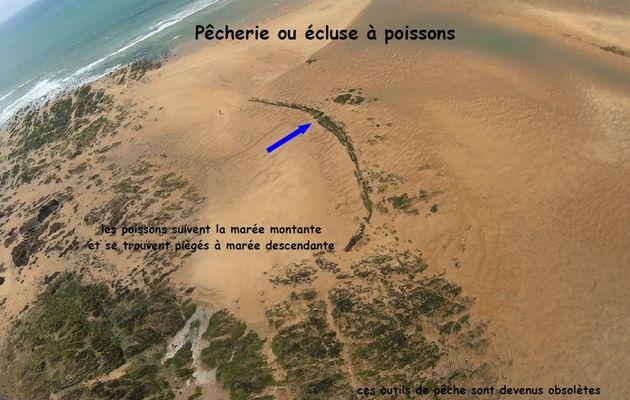 Photos aériennes écluses à poissons du littoral de Talmont Saint