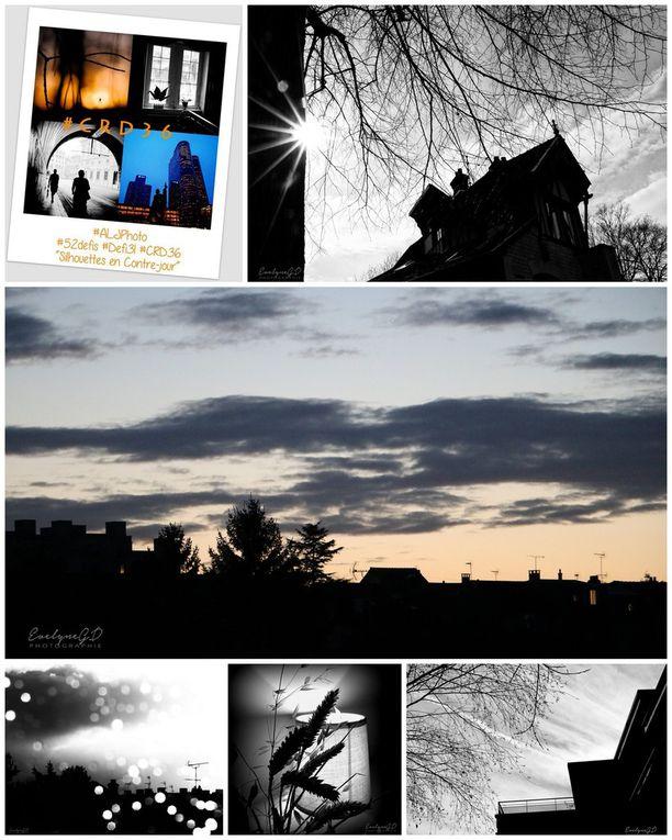 Récapitulation des Défis ALJPhoto - 29 à 33