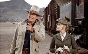 Les voleurs de trains ( The train robbers )