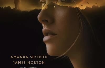 Critique Ciné : Dans les angles morts (2021, Netflix)