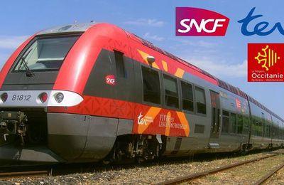 """La SNCF bradée à la découpe! Et çà continue,  Macron vend la France par """"morceaux"""", c'est catastrophique !"""