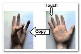Test: i tuoi due emisferi cerebrali comunicano fra di loro?