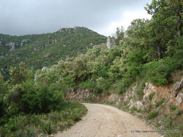 Ballade dans l'arrière-pays varois, sur le plateau d'Agnis, entre La Roquebrussanne et Mazaugues.